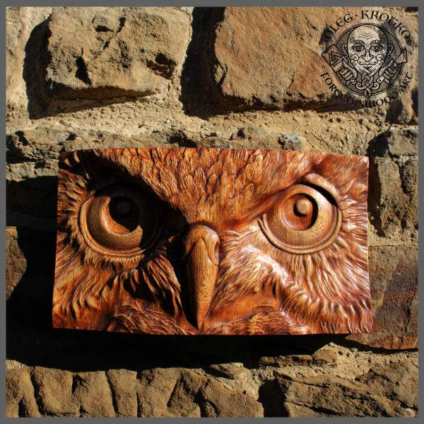Look of the owl