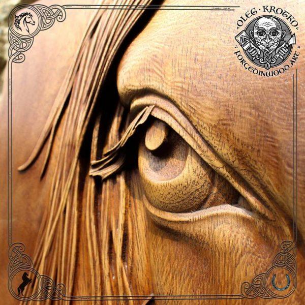 portrait eye horse